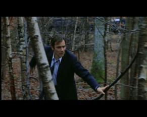 Vogel fugge nel bosco